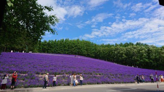 【旅行】小樽 富良野